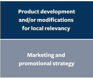 Product Development. Marketing and promotional strategy