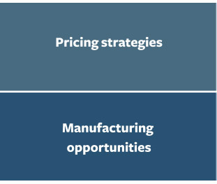 Pricing Strategies. Manufacturing opportunities